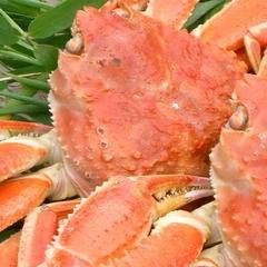 本ズワイ蟹のグルメプラン【舟盛なし】
